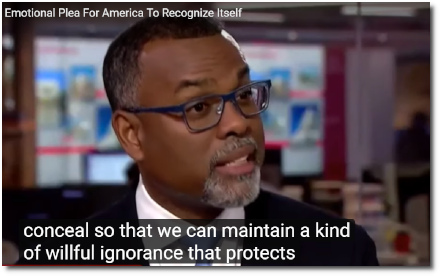 Eddie Glaude says America likes to tell itself myths and fables about our inherent goodness in order to hide our dark secrets so we can maintain a willful ignorance that protects our innocence. (7 Aug 2019)