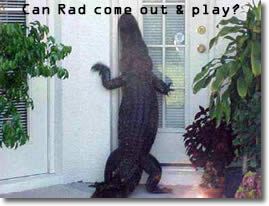 Can Rad come out and play?