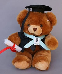 Graduation bear graduating from Harvard University